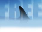 free shark fin swim lurk