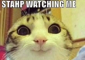stahp watching me 3