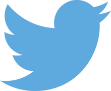 140 not enough? Twitter reportedly will allow longer tweets – much longer