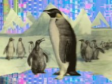 9 Linux distros to watch in 2016