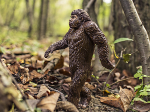 bigfoot myth