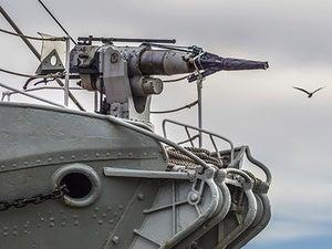 harpoon whaling