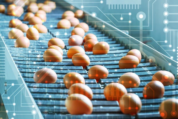 blockchain and food