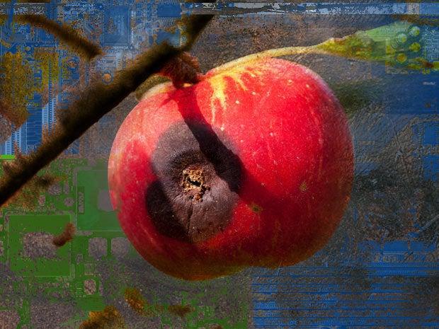 rotten old apple mac